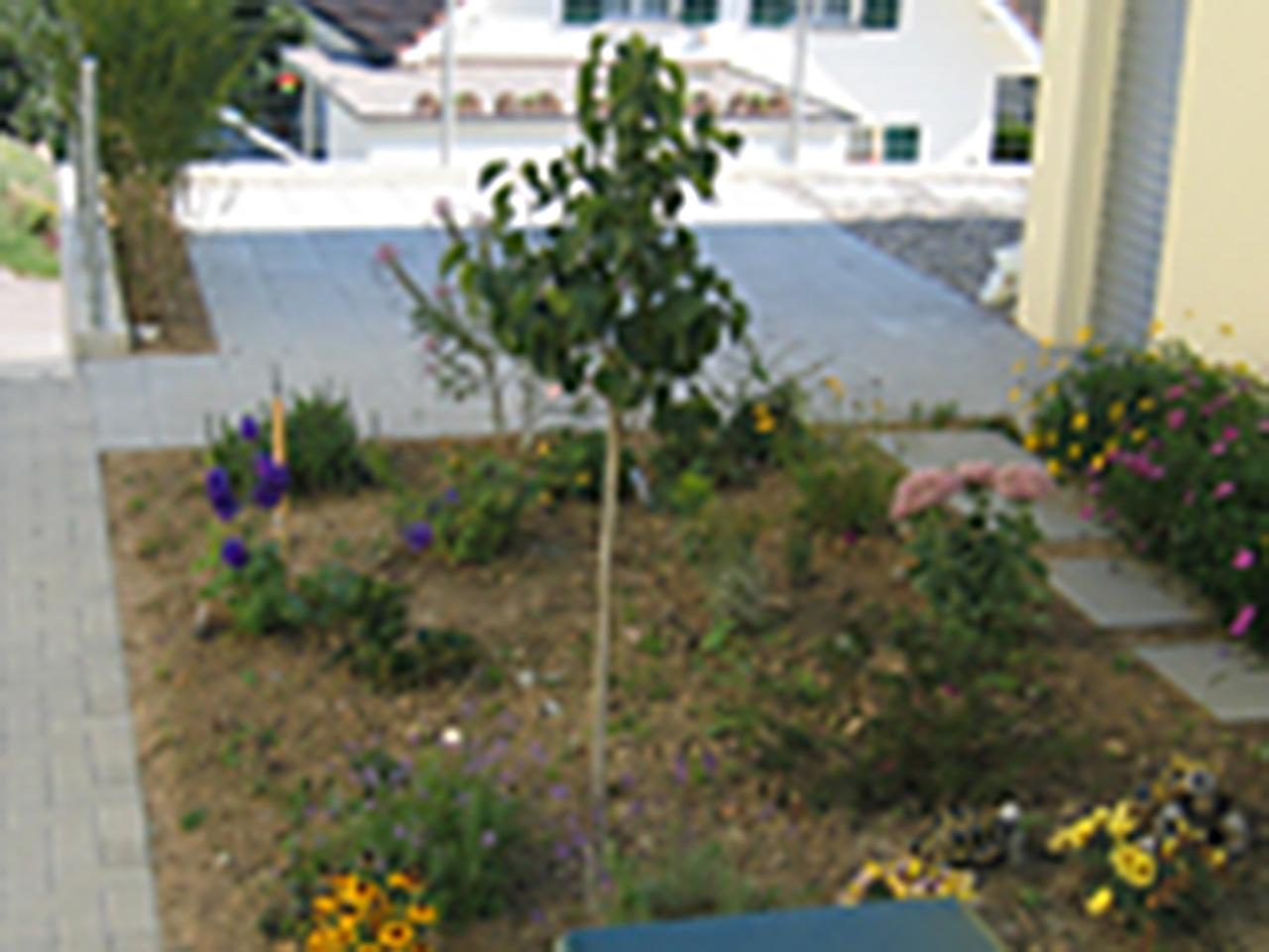laubhus-architektur-einfamilienhaus-vorderrein